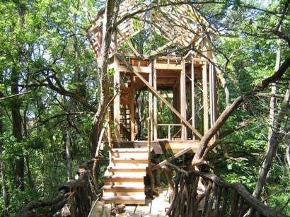 Treehouse-over-bayou-by-Dan-Phillips